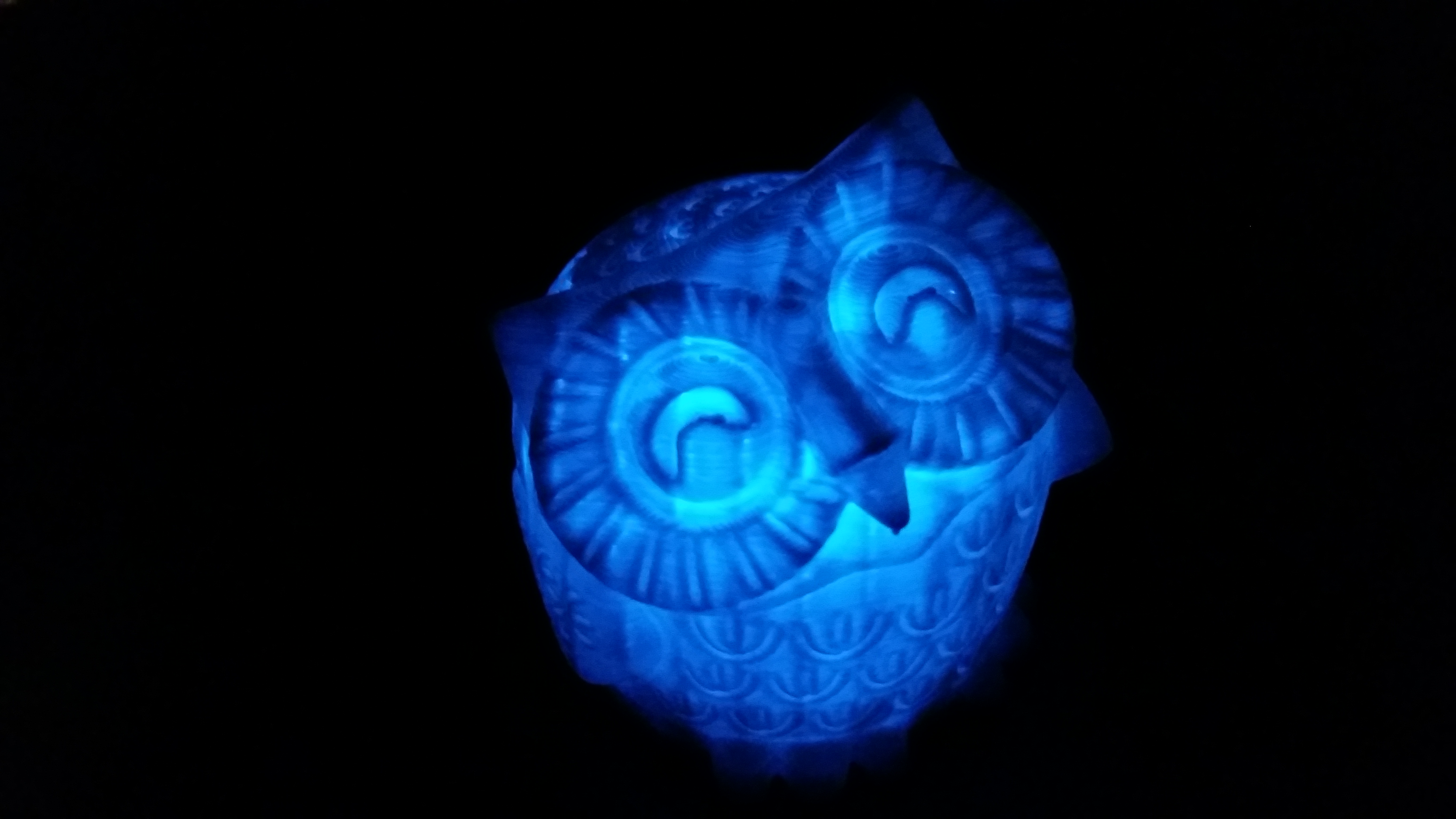 The blue owlantern in the dark